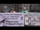 Пикет пермских зоозащитников