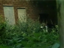 «Тайна Эдвина Друда» 1980, 2-я серия - драма, детектив, реж. Александр Орлов