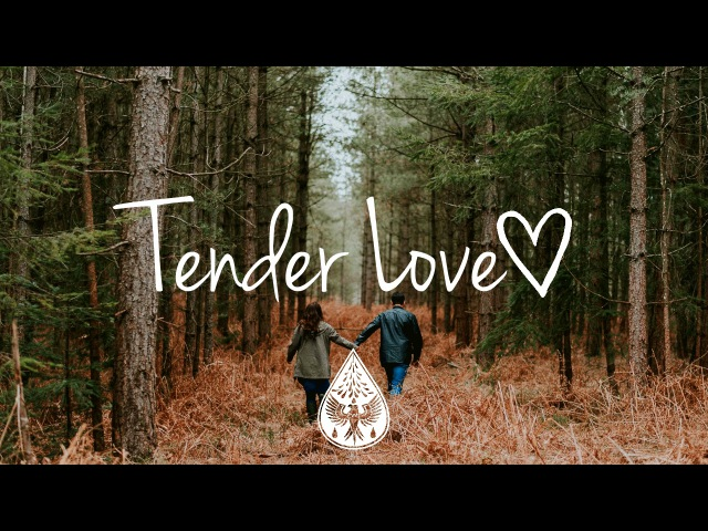 Tender Love ❤️ An Indie/Folk/Pop Playlist   Vol. 1