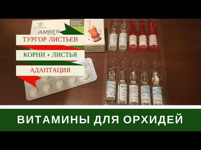 Витамины Для Орхидей Витаминные Коктейли