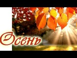 ОСЕНЬ. Музыка осени. Красивая осенняя мелодия любви без слов. Музыка дождя. Осенн...