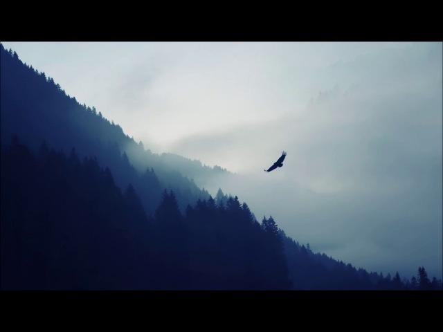 Wünsche - birds