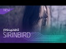 Psypad x Sirinbird x Wordshop Music Video Production [Official Fashion Video]