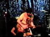 Mojo Nixon &amp The Toadliquors - You Can't Kill Me  Live at Club Clearview - Dallas, Texas 1994