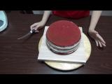 Красный бархат и крем Чиз рецепт - Red velvet and cream cheese recipe - Я - ТОРТодел!