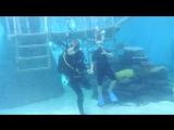 Ариэль с аквалангом в аквариуме часть 1