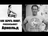 КАК УБРАТЬ ЖИВОТ Арнольд Шварценеггер