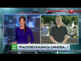 Расплескалась синева_ Журналист НТВ получил по лицу в прямом эфире