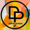 Deep Pulse Radio