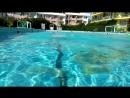 Шторм Реклама AquaStars