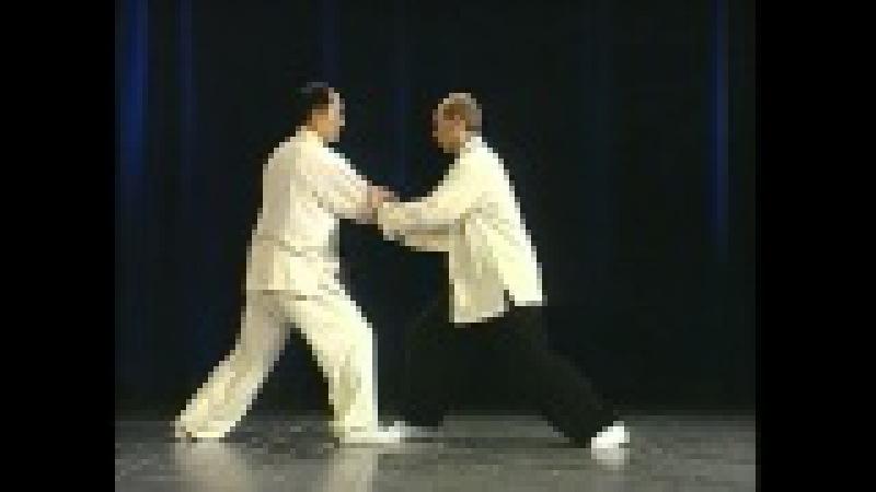 Ян Цзюньмин. Тайцзицюань. Тринадцать позиций. Yang Jwing Ming. Taijiquan Thirteen Postures.