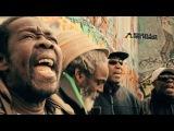Black Roots - I Believe feat. Jah Garvey Official Video 2017