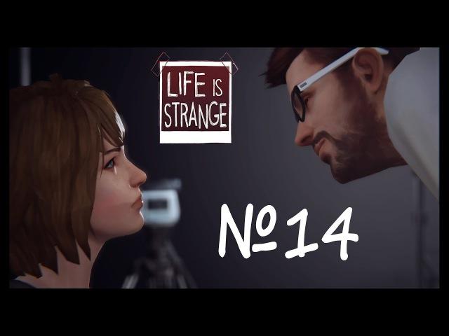 Life is Strange №14 Мой ответВыкуси говна и сдохни