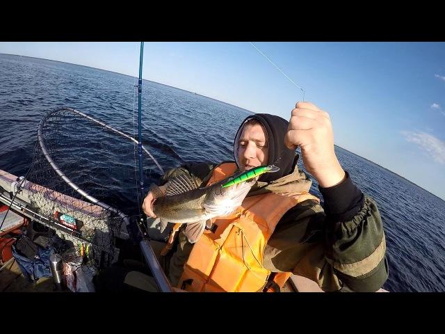Рыбалка на реке Свирь
