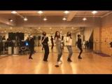 T-ARA TIAMO (띠아모) practice dance version