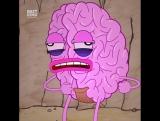 Я и мой мозг