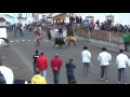 Бои быков Bullfights Португалия Азорские острова Терсейра