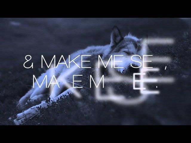 Wolf colony: the otherside [lyrics]