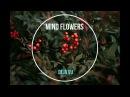 Mind Flowers - Déjà Vu Dreampop Voronezh