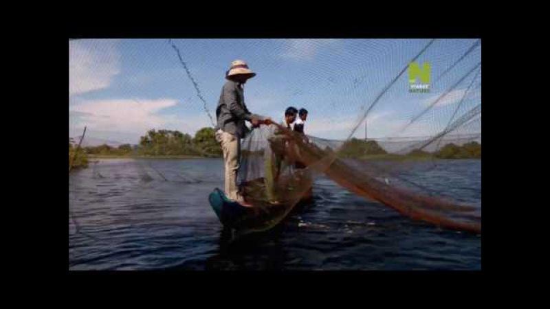 03. Озеро Тонлесап. Бьющееся сердце Камбоджи