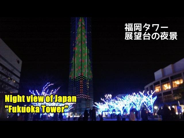 福岡タワー 夜 Night view of Japan Fukuoka Tower