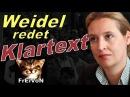 AfD * WEIDEL redet KLARTEXT: ASYL - OFFENE GRENZEN - FAMILIENNACHZUG - SOZIALSYSTEME