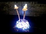 НОЧНИК ГРИБЫnight lamp