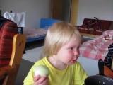 Малышка ест лук как яблоко)