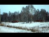 Незаконный полигон отходов лесопиления. Канск, Анцирский район