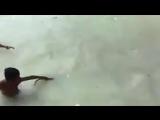 Обычный день в Индии (VHS Video)