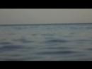 а я у моря мне по*бать