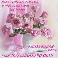 цветы,розы,поздравление,рождения,праздник,стих