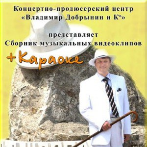 Владимир Добрынин