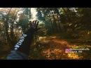 реакція Юліана перші спуски BBP лісники залишили зрізані дерева на трейлах