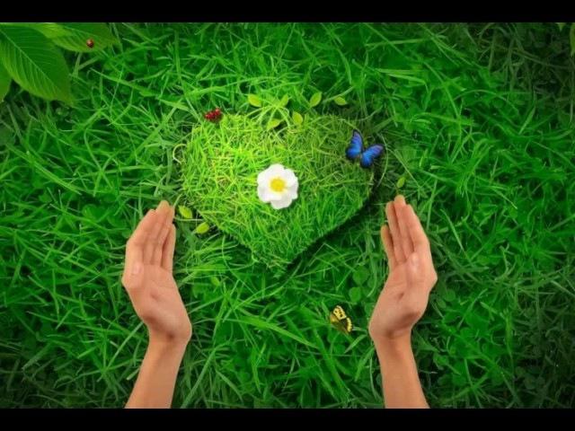 Вспышка любви и ощущения единства с Творцом в момент краха - залог победы и очищения. ЛАЗАРЕВ С.Н.