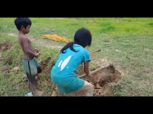 Камбоджийские дети ловят змей. Часть 2.