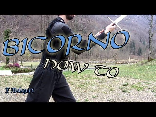 [OUTDATED] Fiore de' Liberi - How to use Bicorno