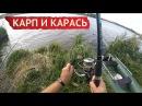 Рыбалка на карпа и карася в сентябре c берега на ложку Заречье Прилепы