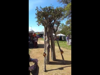 Walking, Talking, Tree at Llano Earth Art Festival