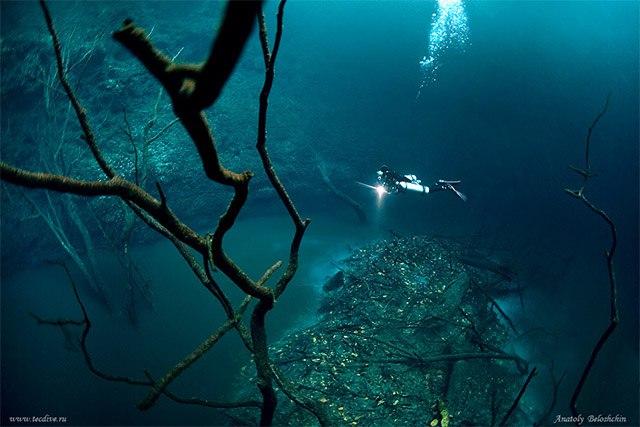 Подводная река в Мексике, Cenote Angelita