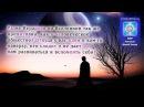 1 Иерархия во Вселенной так же примитивна как и человечество Подлоги в контрак