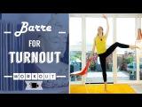 Ballet Barre for Turnout Lazy Dancer Tips