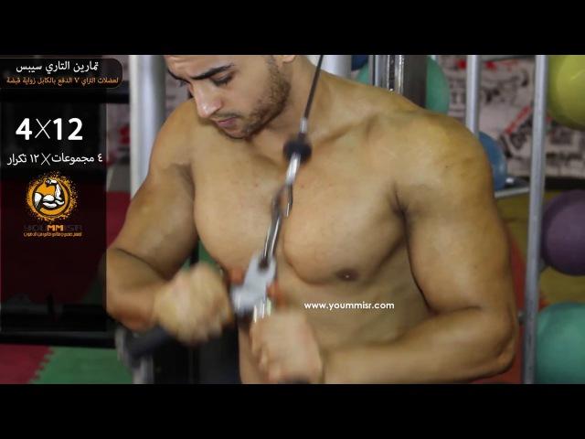 تمارين تقوية عضلات التراي تمرين الدفع بال16