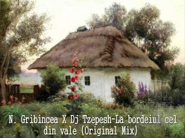 N Gribincea X Dj Tzepesh La bordeiul cel din vale Original Mix