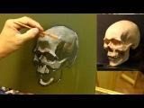 Штудия черепа - Обучение живописи. Масло. Портрет, 12 серия