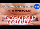 Что приводит к кесареву сечению (Познавательное ТВ, Владимир Базарный)