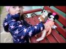 Голый Макс Дети Дятлы Летающий Еж и СобакаПодружка Видео для детей.