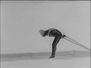 Лыжные гонки, Техника ведущих лыжников