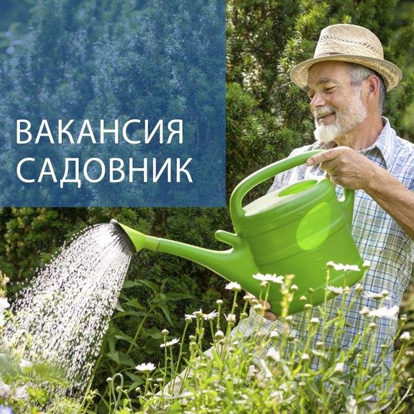 термобелье способно ищу садовника в фирсановке пример: время занятиями