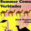SUMMER COMA | VERBLUDES 13.07 Саратов Метро